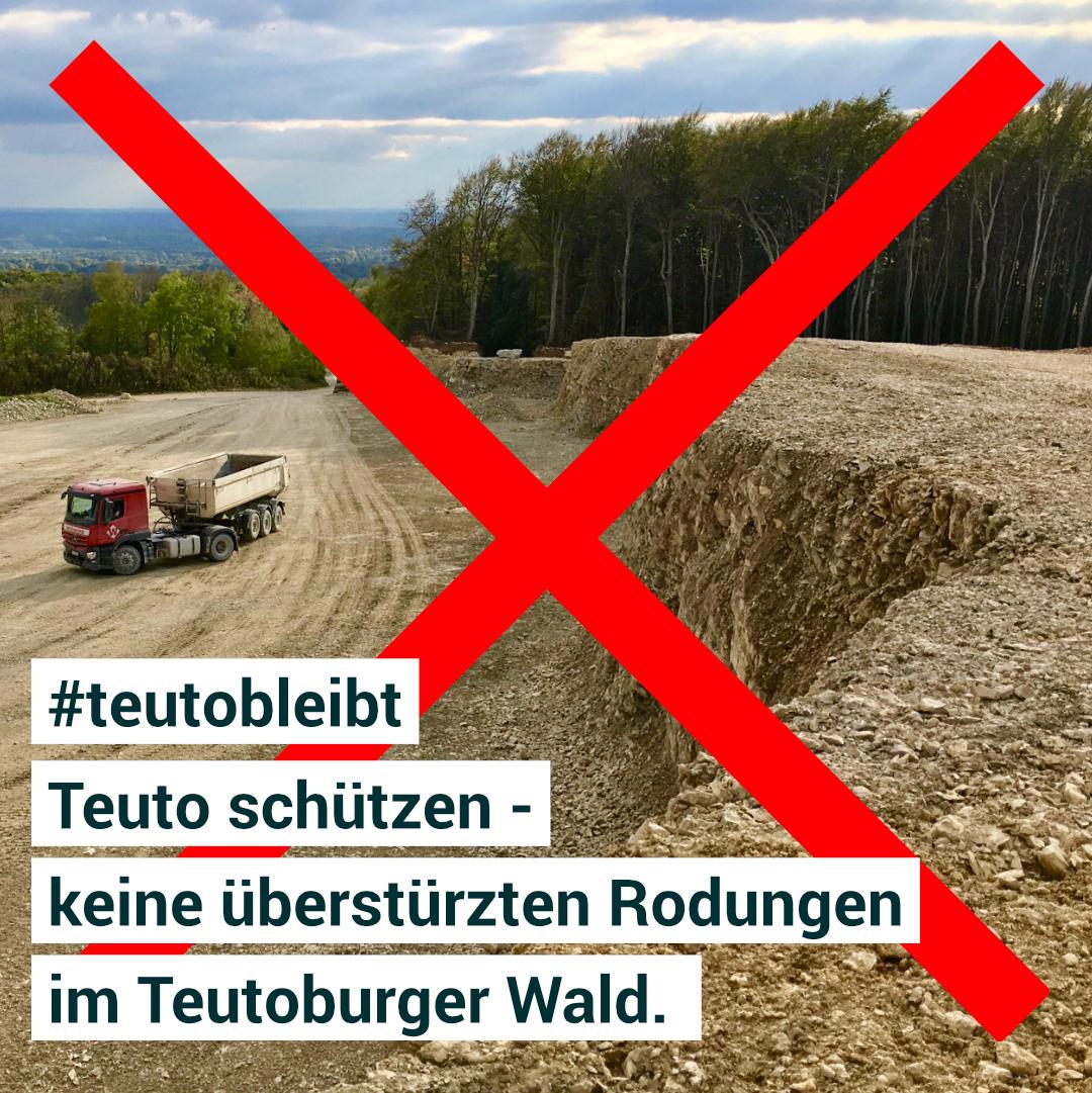 Online petition - Teuto schützen - keine überstürzten Rodungen im Teutoburger Wald